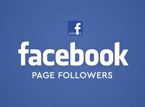 fb page followers 1
